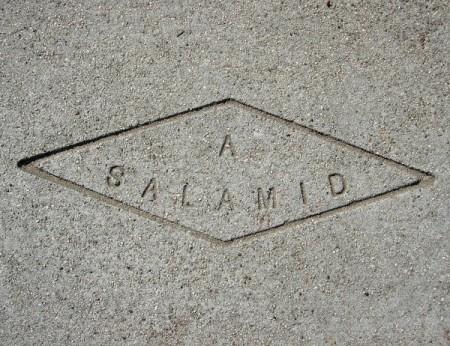 a-salamid-600