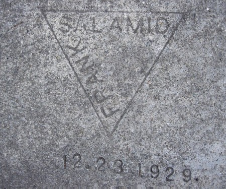 salamid-5