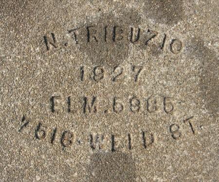 n-trib27