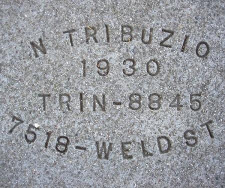 n-trib30