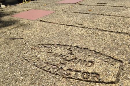 piedwalk-fitz.jpg