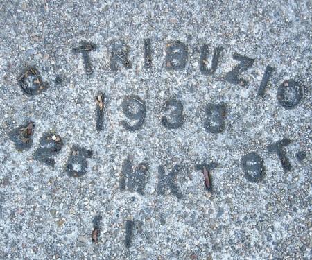 gtribuzio-2
